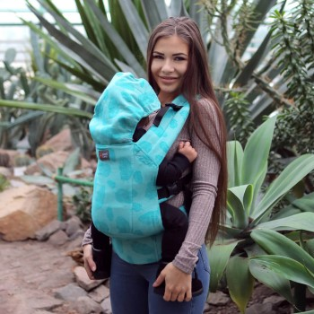 DLight Full Wrap Conversion ergonomic baby carrier - Feathers